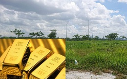 Cô gái độc thân, có 1 tỷ đồng nên đầu tư mua vàng hay mua nhà thời điểm này?