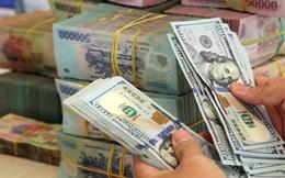 Dự trữ ngoại hối 83 tỷ USD, VinaCapital tin tưởng VND sẽ ổn định ở mức hiện tại