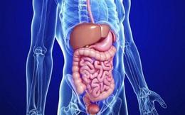 8 khung giờ thải độc cho cơ thể: Ai làm được sẽ giảm bớt nguy cơ bị bệnh ở nội tạng