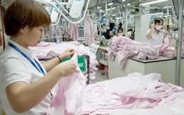 Hơn 22 triệu lao động Việt Nam dễ mất việc do dịch COVID-19