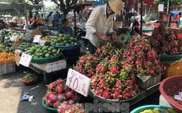 Trái cây mùa hè giá rẻ như cho vẫn ế