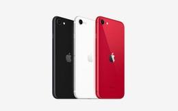 Apple ra mắt iPhone SE 2020 'không kèn, không trống', giá từ 399 USD