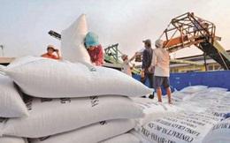 Kiến nghị Thủ tướng cho xuất khẩu gạo trở lại bình thường từ 01/5