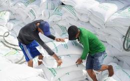 Gạo thực xuất mới đạt gần 50% hạn ngạch 400.000 tấn