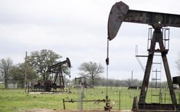 """Tại sao Trung Quốc không còn là """"phao cứu sinh"""" đối với OPEC?"""