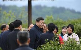 """Covid-19: Sự """"bất thường"""" đằng sau những chuyến thị sát thông thường của giới lãnh đạo Trung Quốc"""