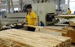 Tăng trưởng xuất khẩu của ngành gỗ Việt Nam năm 2020 có thể bằng 0%
