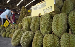 60 giây, 80.000 quả, nặng 200 tấn bán hết veo: 'Cơn nghiện' sầu riêng của người Trung Quốc giúp nông dân Thái Lan đổi đời, trả hết nợ, tậu xe hơi