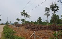 Loạn chuyển nhượng đất ở Phú Quốc: Có trách nhiệm của chủ tịch tỉnh thời kỳ 2011-2017