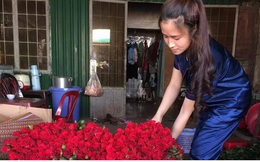 Lâm Đồng rau, hoa tăng giá trở lại nhà vườn phấn khởi