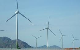 Ninh Thuận triển khai dự án năng lượng tái tạo 12.000 tỷ đồng
