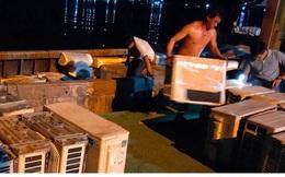 Bắt giữ số lượng lớn hàng điện lạnh, điện tử đã qua sử dụng từ Campuchia về Việt Nam