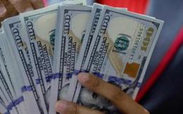 Lãi suất, tỷ giá USD/VND giảm mạnh trên liên ngân hàng