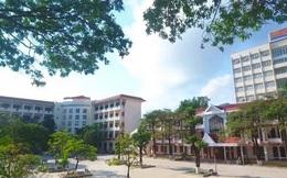 Quảng Ninh lên tiếng về việc kiện toàn chức danh Hiệu trưởng Trường ĐH Hạ Long