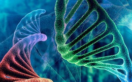 Sự thật về cơ chế chính cơ thể sẽ quyết định ung thư có di căn hay không?