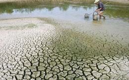 WB phê duyệt khoản vay 84,4 triệu USD giúp Việt Nam ứng phó với biến đổi khí hậu