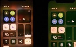 iPhone 11 gặp lỗi kỳ lạ: Trông thì đẹp nhưng lại gây khó chịu vô cùng