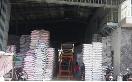 Giá gạo đã bắt đầu sụt giảm sau khi tăng ở mức kỷ lục