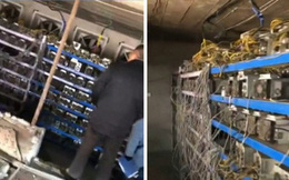 Cơn sốt tiền ảo càn quét một vùng nông thôn Trung Quốc: Mỏ đào bitcoin giấu trong chuồng lợn, cả làng ăn cắp điện nuôi mộng làm giàu