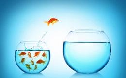 """7 """"cái được"""" của phát triển bản thân: Người khôn ngoan biết tận dụng cơ hội, kẻ yếu thế lười biếng đánh mất tương lai"""