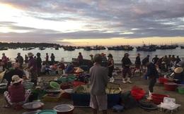 Chợ cá lúc bình minh bên đường Hoàng Sa