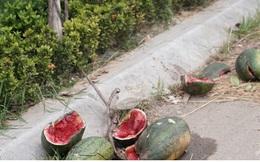 Rác thải ngập ngụa trên đại lộ mới 1.500 tỷ ở Hà Nội