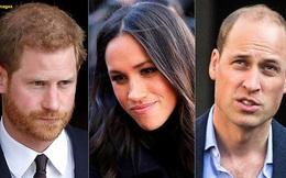 Mối thù hoàng gia: Hoàng tử William đã phá tan giấc mộng trục lợi từ gia đình nhà chồng của Meghan Markle bằng thái độ kiên quyết