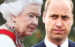 Niềm đam mê ít ai biết của Hoàng tử William: Sớm bị Nữ hoàng cấm cản vì thân phận là người kế vị tương lai