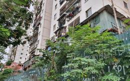Tận thấy cảnh hoang tàn các khu nhà tái định cư ở Hà Nội