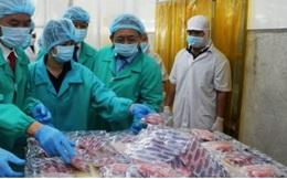 Cá ngừ Việt Nam rộng cửa vào Châu Âu