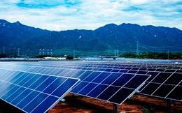 """Dự án điện mặt trời lớn nhất Đông Nam Á tại Ninh Thuận """"về đích"""""""