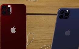 Rò rỉ thông tin 2 màu mới của iPhone 12 trước ngày ra mắt