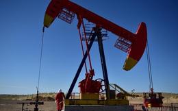 IEA: Nhu cầu năng lượng có thể phục hồi hoàn toàn vào năm 2025