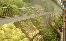 EVFTA mở ra cơ hội mới cho nông sản Việt, song cần khắc phục yếu điểm bảo quản, kết nối đầu ra với doanh nghiệp lớn trong và ngoài nước