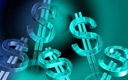 Chứng khoán Tiên Phong (ORS) đã hoàn thiện hồ sơ đăng ký chào bán riêng lẻ 56 triệu cổ phiếu