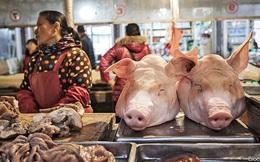 Lần đầu tiên sau hơn 1 năm, cơn sốt thịt lợn Trung Quốc hạ nhiệt