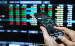 Chuyển động quỹ đầu tư tuần 12-18/10: Dragon bán ACB, thỏa thuận lớn tại MWG và FPT