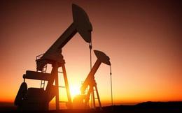 Thị trường ngày 02/10: Giá dầu, đồng giảm sâu 4%; vàng và ngô tăng khá