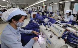 Tổng công ty Đức Giang (MGG) ước lãi quý 3/2020 giảm hơn nửa so với cùng kỳ