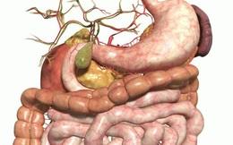 Khi 4 bộ phận này bị cứng, là cơ thể đã có trọng bệnh: Bạn phải chú ý thăm khám sớm