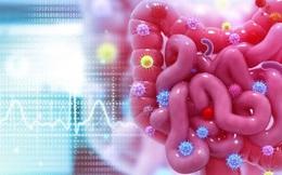 Loại ung thư thường gặp ở Việt Nam và Mỹ, rất nguy hiểm nếu không điều trị kịp thời: Nguy cơ từ đâu?