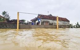 Sống trên nóc nhà, người dân Quảng Bình khắc khoải chờ lũ rút