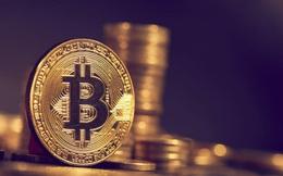 Giá Bitcoin cao nhất hơn 1 năm nhờ PayPal chấp nhận tiền ảo