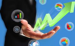Becamex IJC sắp chào bán 80 triệu cổ phiếu thông qua đấu giá để tăng vốn điều lệ