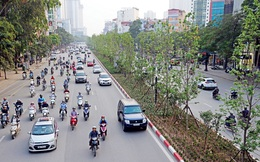 Tp.HCM sẽ triển khai thí điểm đánh giá tác động giao thông đối với công trình xây dựng trong 2 năm