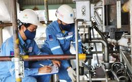 Giá khí nguyên liệu rẻ, lợi nhuận quý 3 Đạm Cà Mau gấp 11,5 lần cùng kỳ