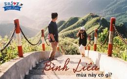 Cách Hà Nội chỉ 270 km, có một chốn núi rừng mang tên Bình Liêu với ruộng bậc thang và đồng cỏ lau đẹp chẳng kém Hà Giang: Ít ai ngờ Quảng Ninh lại có những địa điểm như thế
