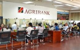 Agribank rao bán 123 tấn thuốc bảo vệ thực vật để thu nợ