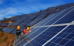 60% tổng công suất điện mặt trời mái nhà của EVN đến từ khu vực phía nam