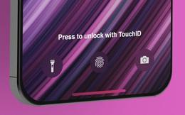 iPhone 12 sẽ không có Touch ID, người dùng lại phải kéo khẩu trang để mở máy!